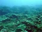 トカラ中之島(秘)不明ポイント2006年11月04日