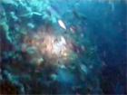 南伊豆雲見2007年11月25日